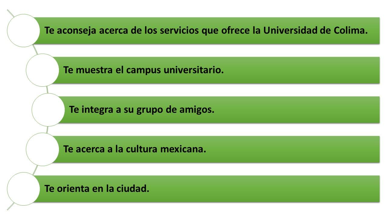 Universidad de Colima / Relaciones Internacionales - Amigo Loro